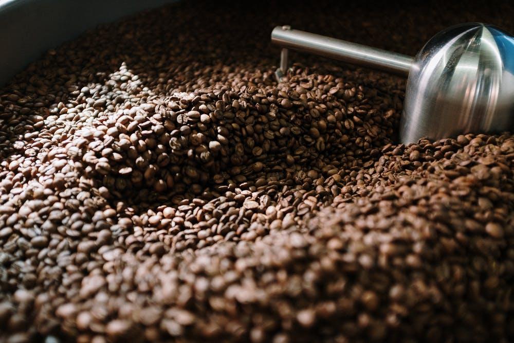 Le café indien, un mystère gustatif
